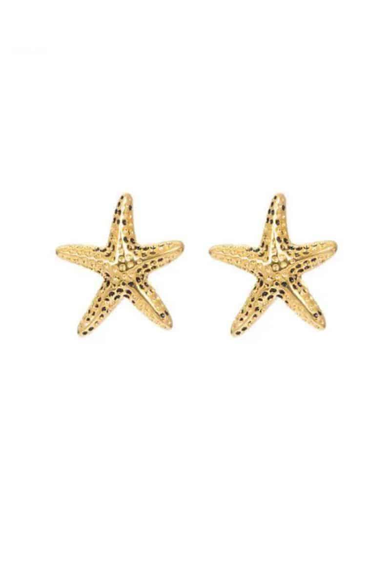 iXXXi Jewelry Ear Studs Starfish